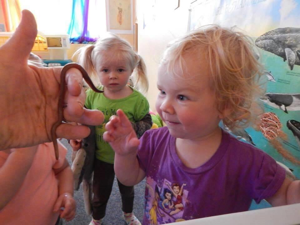 An adult shows two toddlers earthworms